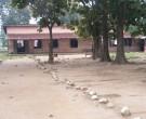 Classrooms I